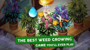 Hempire – Weed Growing Game Mod 1.18.3 Apk [Unlimited Money] 1